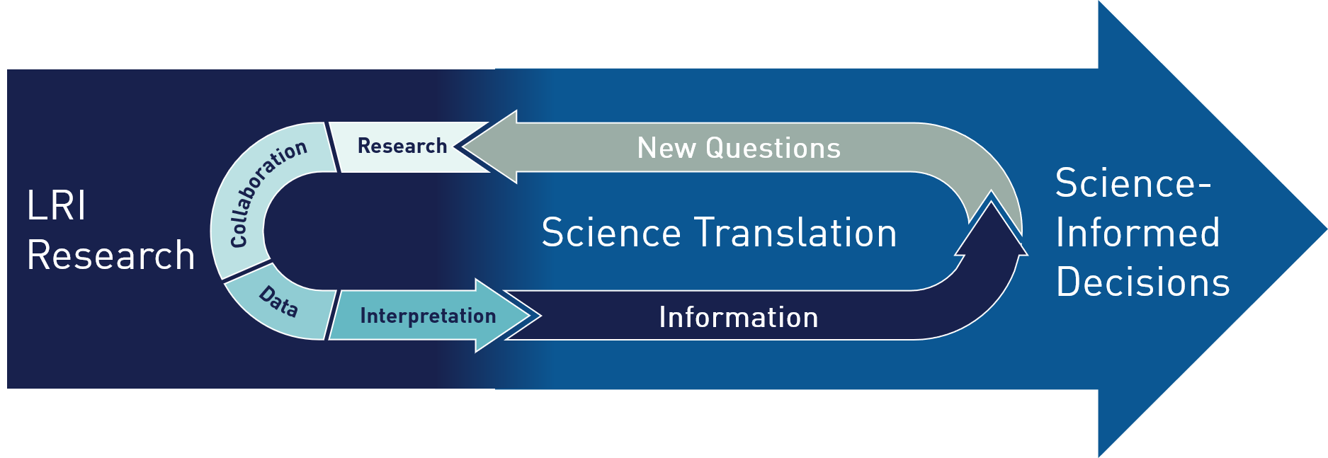 LRI Research Cycle Methodology