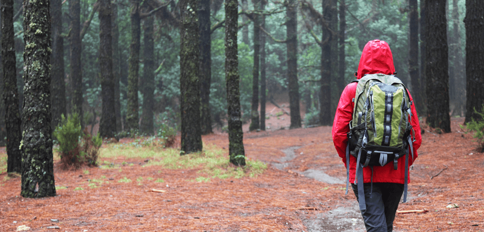 Woman Walking in Woods Wearing Red Jacket that is Repelling Water