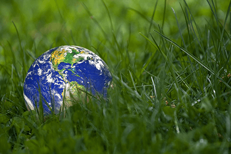 Environment Globe Grass