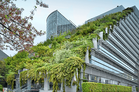 Green Roof at Commercial Building