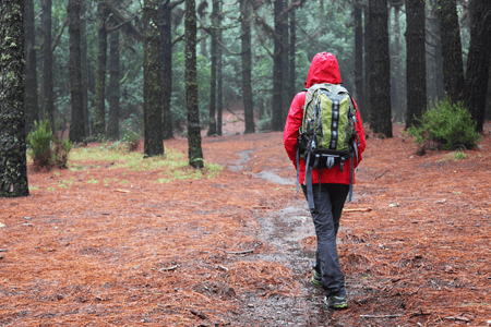 Woman Walking in Woods Wearing Red Jacket That's Repelling Water